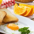 Stock Photo: Breakfast with fried egg