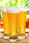 Beer glasses — Stockfoto