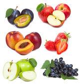 Conjunto con frutas y bayas — Foto de Stock