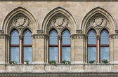 Rathaus Wien — Stock Photo