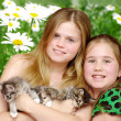 Portrait girls with cats — Stock Photo #6612896