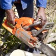 Man cutting tree with chain saw — Stock Photo