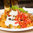 Fresh nachos and vegetable salad with meat - Stock Photo