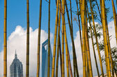 Shanghai pudong view from puxi — Stock Photo
