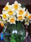 黄色い水仙の花束 — ストック写真