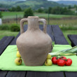 Still life in the rural outdoors — Stockfoto