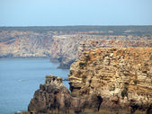 Monumental cliff coast near Cape St Vincent, Portugal — Stock Photo