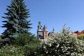 Colina de wawel y el castillo real de cracovia — Foto de Stock