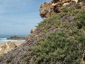 Praia do castelejo, vicino a vila do bispo, algarve, Portogallo — Стоковое фото
