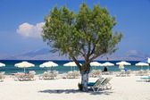 Mastichari beach on Kos Island — Stock Photo