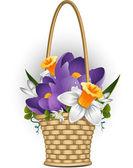 Mandje van lentebloemen — Stockvector