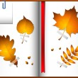 Autumn leaves in a notebook — Stock Vector #6470352