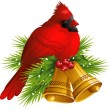 Cardinal Bird with Christmas bells - Stock Vector