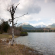 Strbske pleso lake — Stock Photo