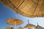 Beach umrella — Stock Photo
