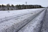 Railway in surroundings — Stock fotografie
