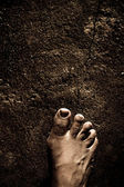 Bare Feet — Stock Photo