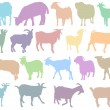 Stock Vector: Silhouettes sheep and Goat