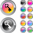 Key multicolor round button. — Stock Vector