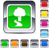 Botón cuadrado árbol. — Vector de stock