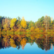Picturesque autumn landscape on the river — Stock Photo #5603396
