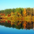 Picturesque autumn landscape on the river — Stock Photo