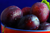 Plums. Fresh ripe washed plums in a ceramic bowl close-up on a b — Stock Photo