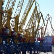 View on seaport with cranes at day — Stock Photo