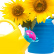 Sunflower bouquet and watering can — Photo