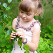 Stock Photo: Cute girl in park is considering young leaves