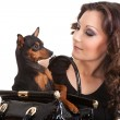 Beautiful woman with dog in purse - Stock Photo