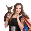 Shopping posh girl with miniature pinscher — Stock Photo