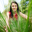 Woman Peering Through Grass — Stock Photo #6384101