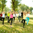 Stock Photo: Yoga group, tree position,