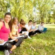 Students studying outdoor — Stock Photo #6628484