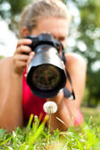 Photographer girl in nature — Stock Photo
