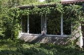 Hus i gröna — Stockfoto
