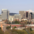 Royalty-Free Stock Photo: Portland Oregon Downtown Skyline Panorama