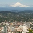 Portland Oregon Cityscape with Mount Hood — Stock Photo #5831502