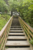 Wooden Stairs at Hiking Trail Vertical — Stock Photo