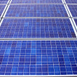 Stock Photo: Solar panels fill frame
