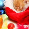 Royalty-Free Stock Photo: Small kitten and christmas ornaments