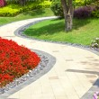 Stock Photo: Beautiful summer garden with walkway winding its way through