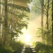 Misty spring deciduous forest at dawn — Stock Photo