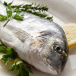 Gilthead over dish ready to cooking — Stock Photo #6387571
