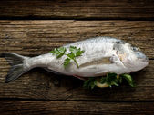 Gilthead over wood ready to cooking — Stock Photo