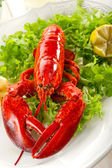 Whole lobster with salad — Stock Photo