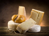 Variety of cheese — Stock Photo