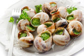 Bourguignonne snail- lumache alla bourguignonne — Stock Photo