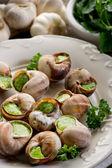 Bourguignonne snail- lumache alla bourguignonne — Stock Photo